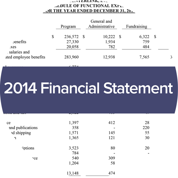 image of centerlink financial statement